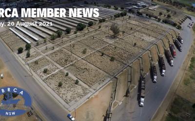 LBRCA Member News